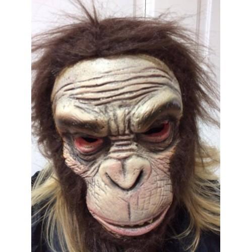 Hlava opice
